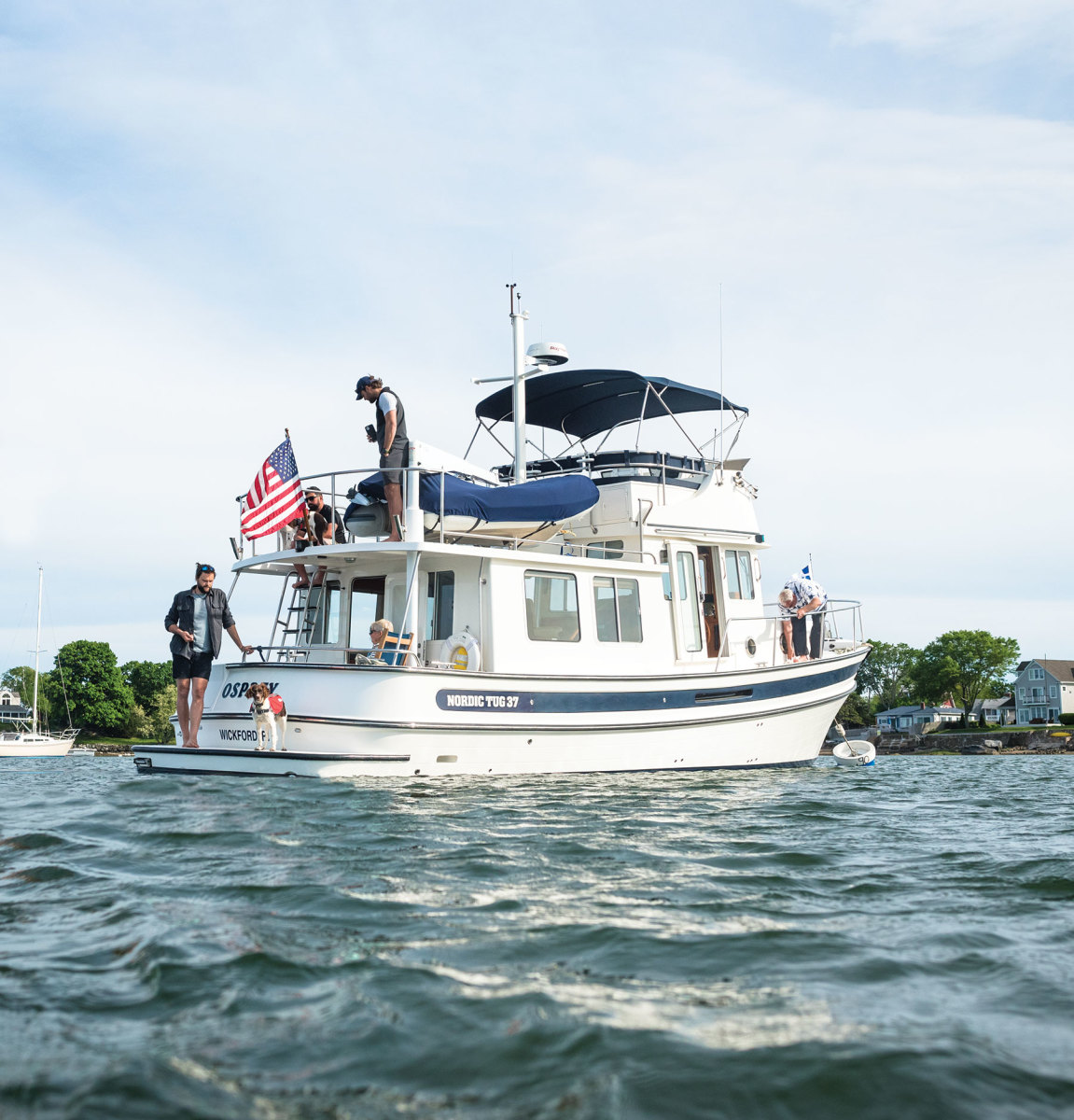 A Brittany Spaniel gets its sea legs on a Nordic Tug 37.