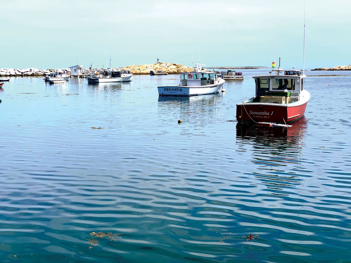 Lobsterboats in Matinicus harbor.
